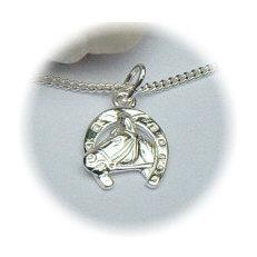 Zilveren hanger paard hoefijzer