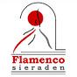 Flamenco Sieraden